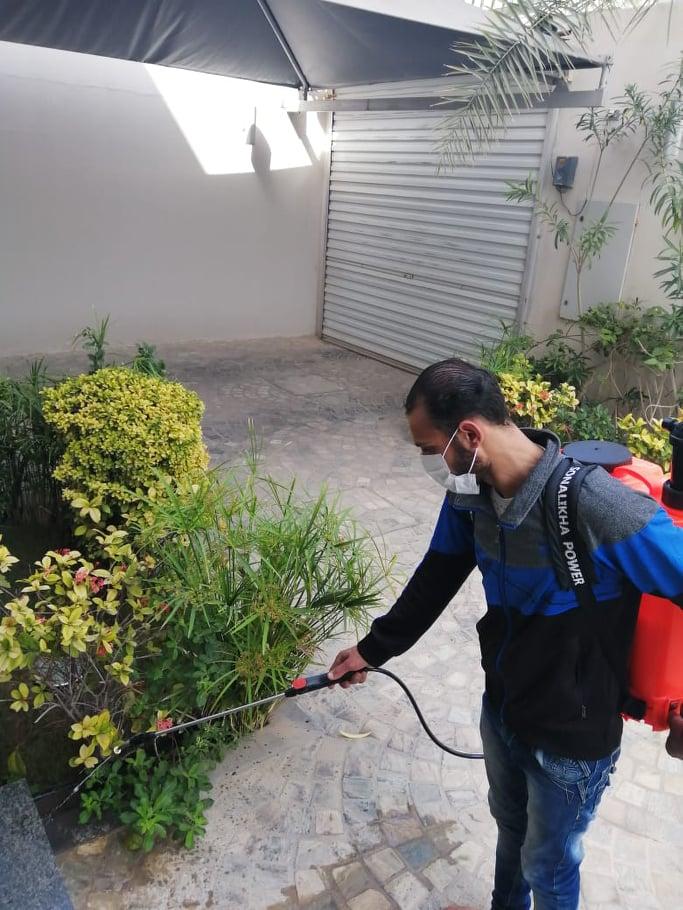 شركة مكافحة حشرات بالجبيل 0503187411 مكافحة النمل الابيض و الصراصير بالجبيل